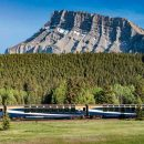 Train in countryside with trees and mountain