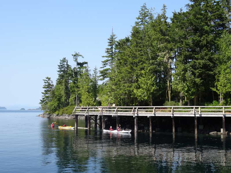 People kayaking by pier on lake with trees