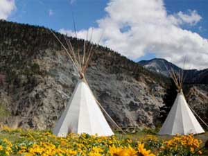 Tipis with mountains and yellow flowers