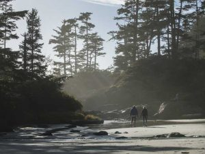 Cox Bay Vancouver Island, trees with water and sand