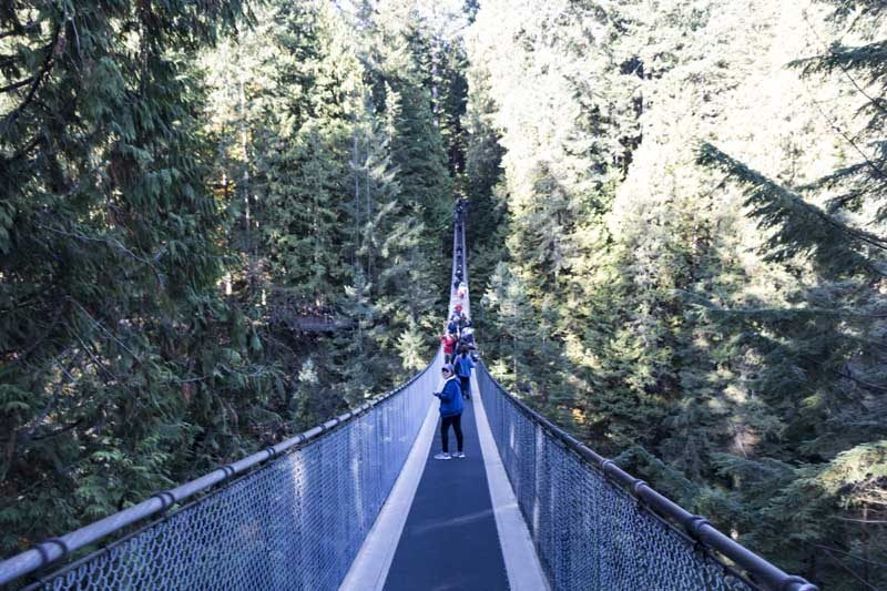 People on suspension bridge