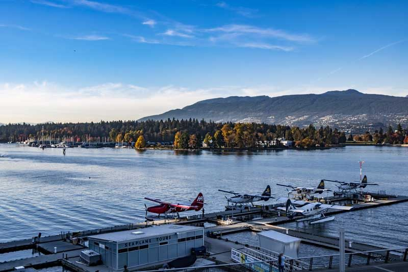 Sea planes in harbour with trees and mountains