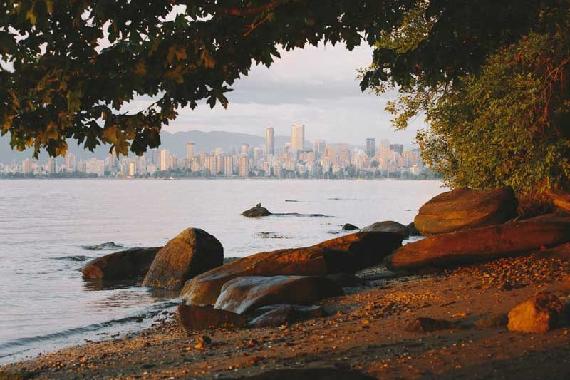 Beach with rocks and trees and city in background