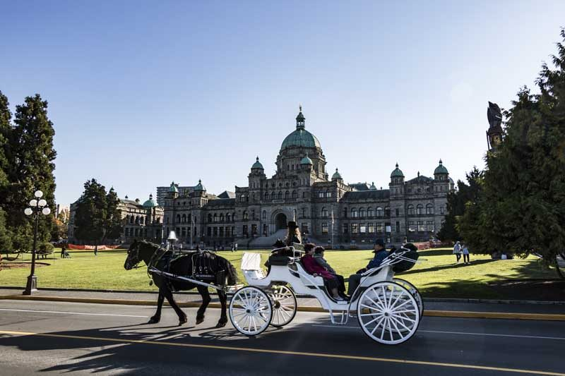 Horse drawn carriage with historical building