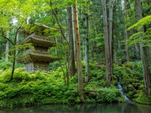 Japanese garden in Zen Style with temple
