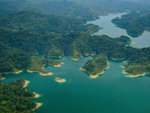 Emerald lake with green islands
