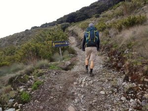 A man trekking on the Cerro Chirripo hike