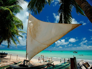 Coconut Palms and Fishing Villages