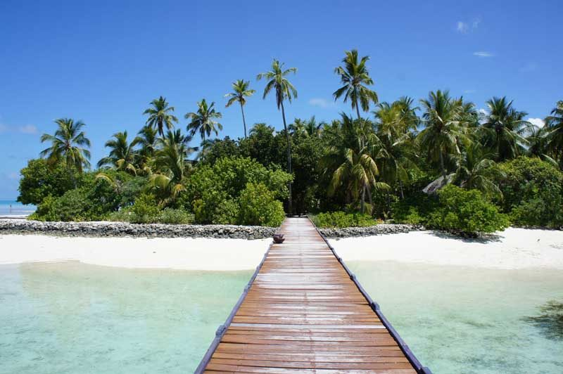 wooden jetty on paradise beach towards island with palm trees