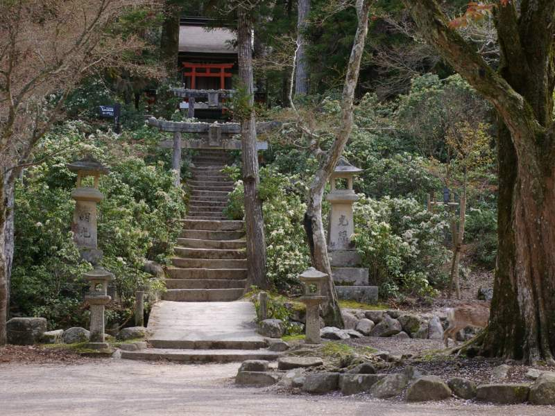Stairs leading up to red temple