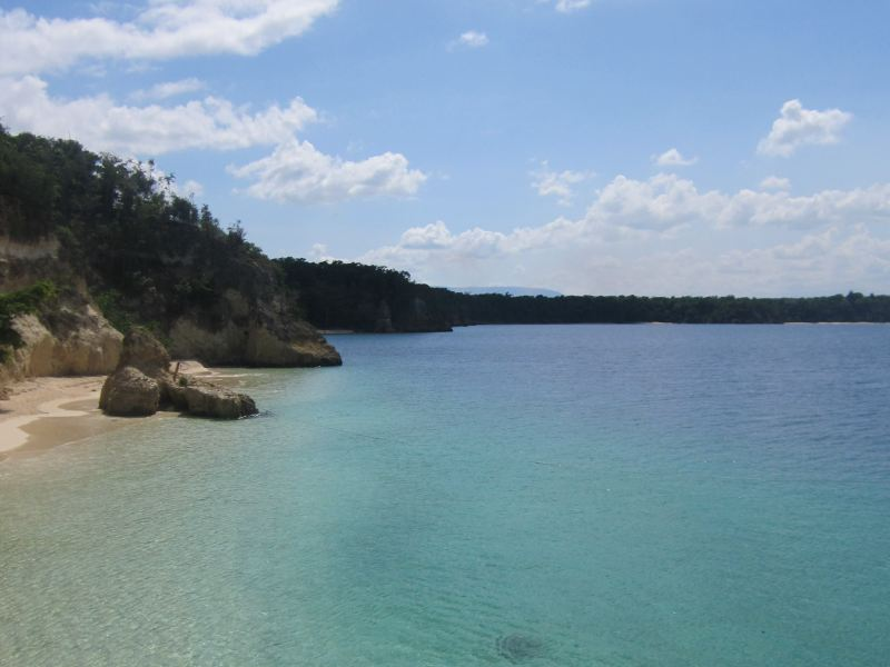 Bright blue ocean with tree shore