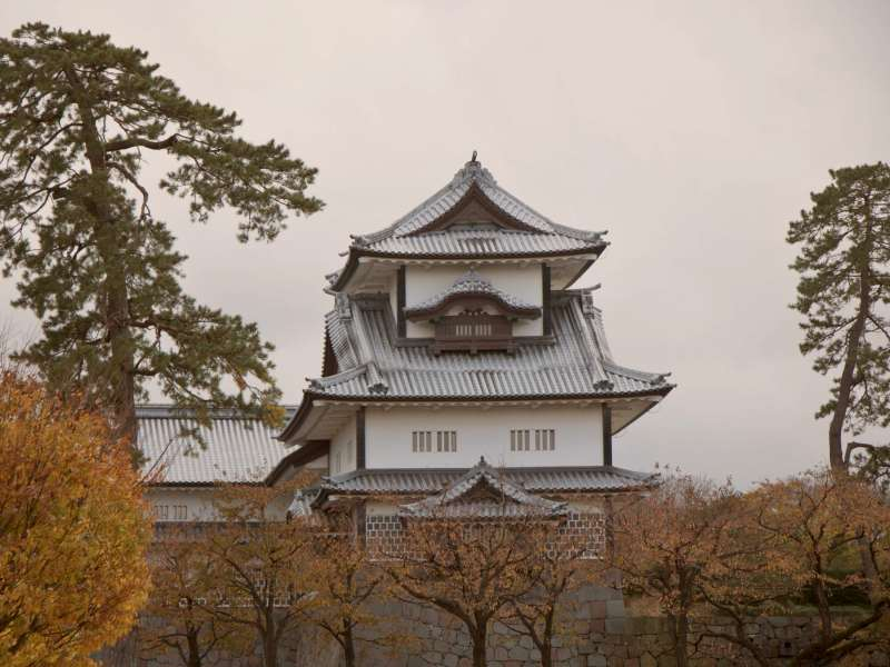 White Japanese temple rising above autumn leaves