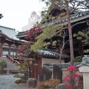 Colourful Japanese temple with autumn trees