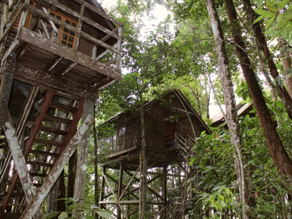 Treehouses on the Damai Peninsula Borneo
