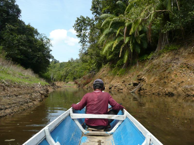 Traditional boat in Borneo being rowed by guide