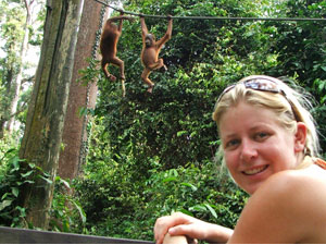 Visiting the Orangutan Centre