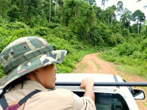 heading into the Tabin Wildlfie Reserve