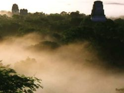 The morning mist over Tikal