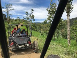 Family on buggy tour with green background