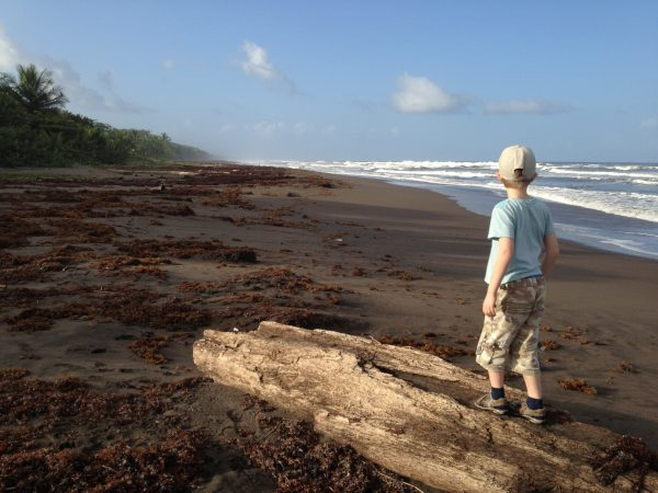 Boy standing on plank of wood at beach