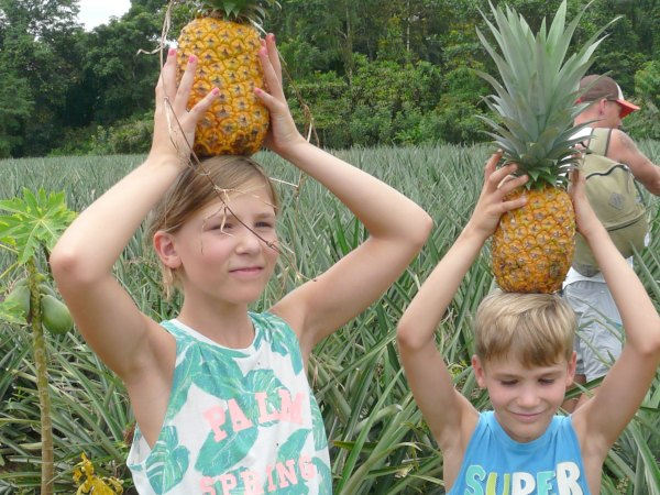 Kids with pineapples on their heads