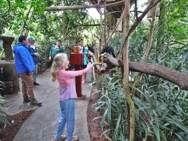 Girl feeding toucan in rainforest