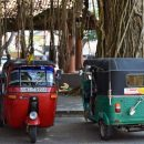 Tuk Tuk on Street in Sri Lanka