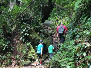 Young boys trekking in jungle