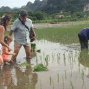 Family helping pick crops on farm