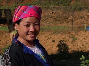Local woman in Vietnam amongst the rice paddies