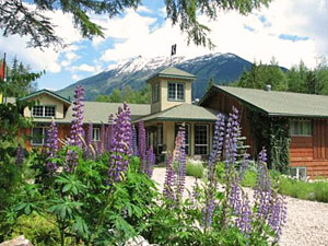 Green lodge with heather plants in front