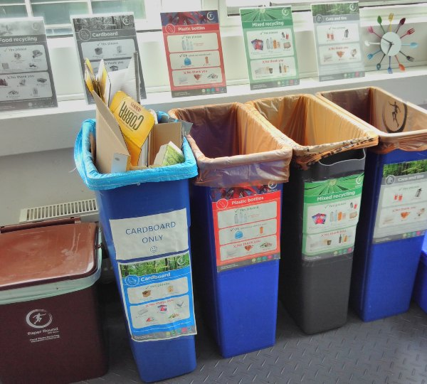 Group of recycling bins laid out next to each other