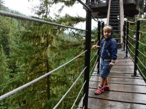boy standing on bridge amongst trees