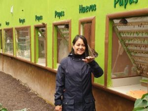 woman in butterfly centre