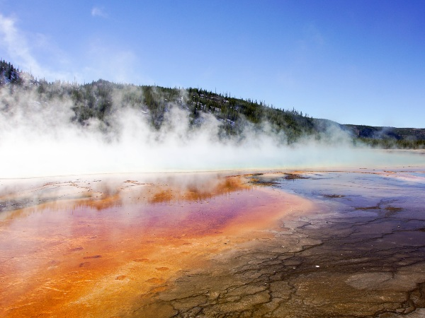 Springs at the Yellowstone National Park