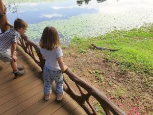Children looking at a Caiman