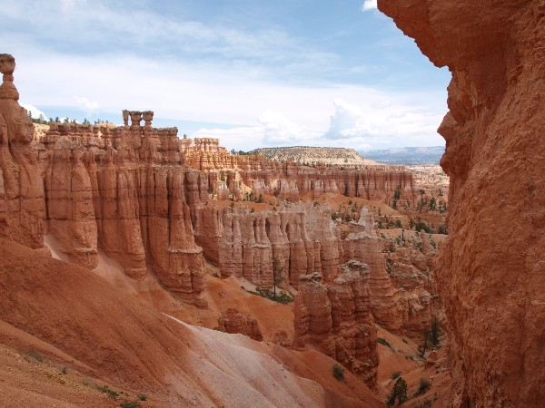 Red rock formations in Bryce NP, USA