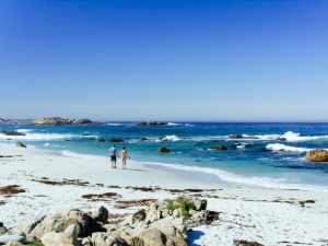 Beach in Monterey beach, USA