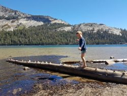 boy standing on log in water