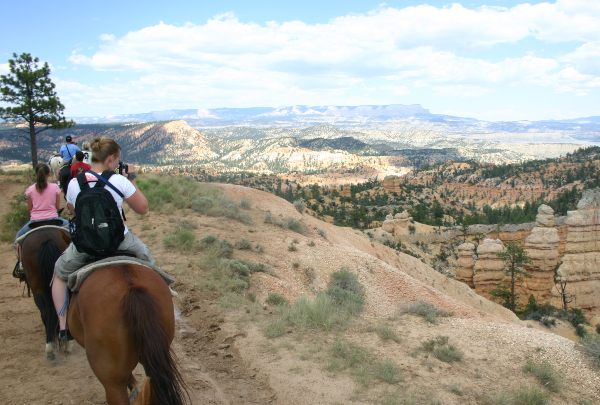 Group horseriding at Bryce National Park, USA