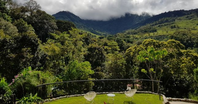 costa rica view from hotel balcony of trees and nature
