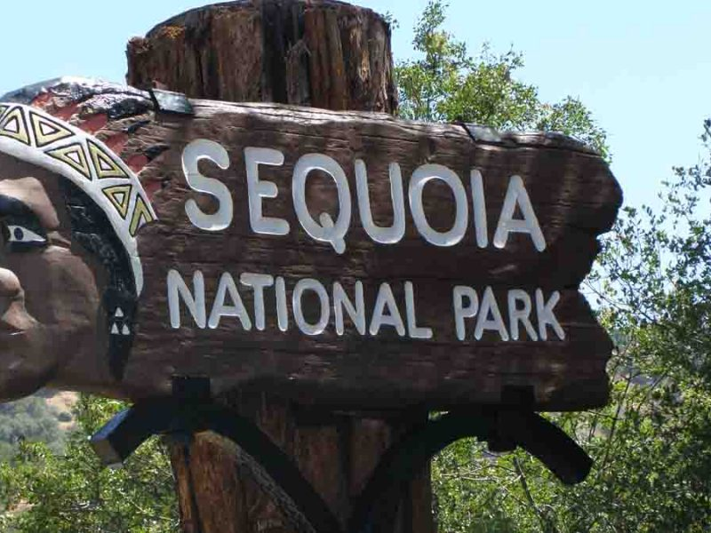 sequoia national park wooden sign
