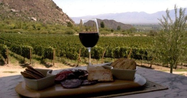 glass of red wine with snacks and vineyard in background