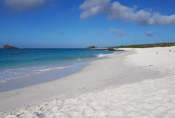 White sandy beach in Espanola Island in the Galapagos