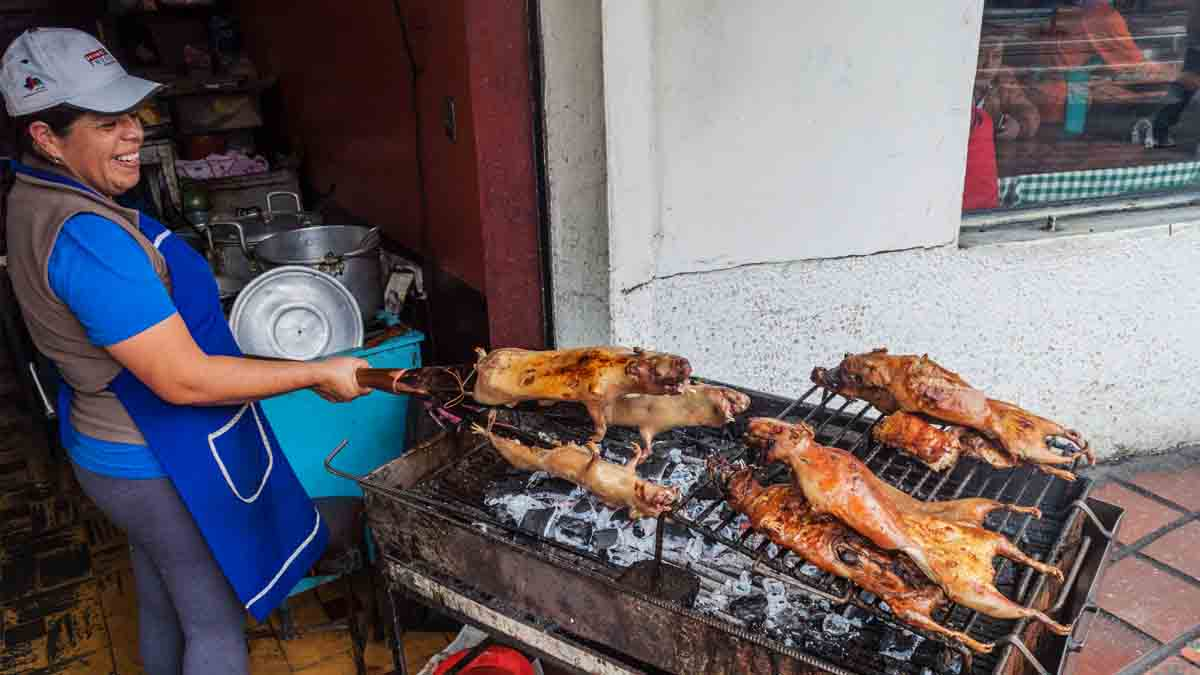 woman cooking cuy guinea pigs