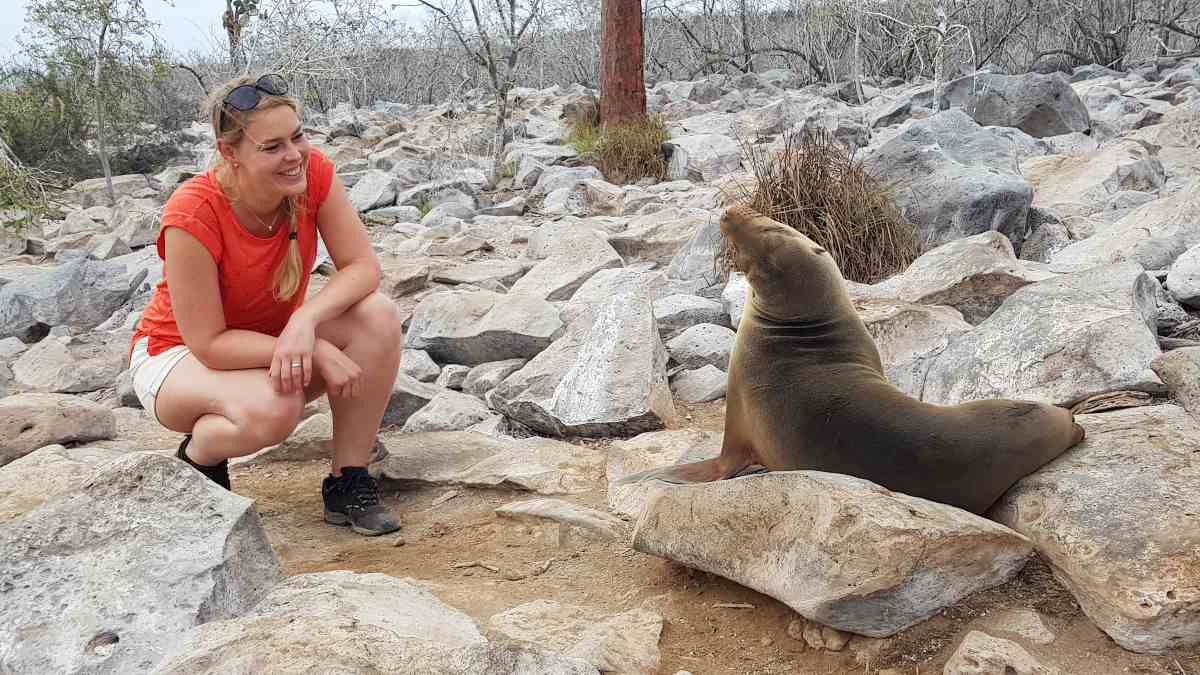 sea lion and woman on beach