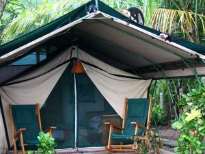 Safari tent in Matapalo