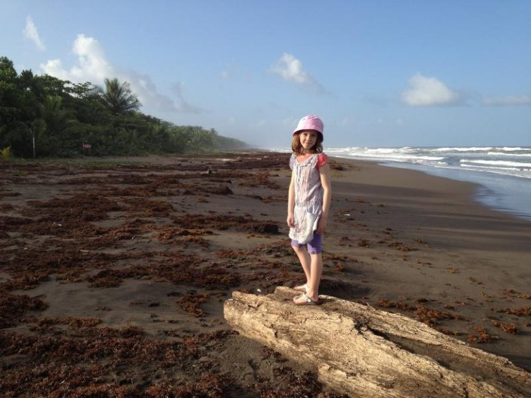 girl standing on driftwood on the beach
