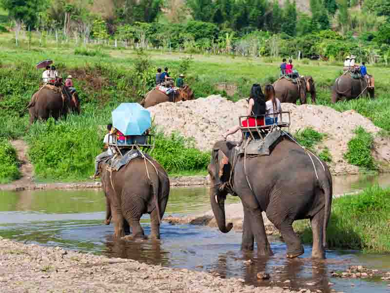 tourists riding elephants in asia