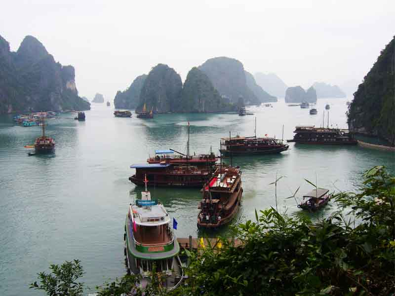 boats in the harbour at Halong Bay